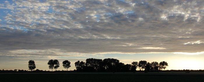 zonsondergang-mus-nieuwvliet